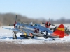 Andy Stark\'s P-47
