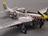 Andy Stark P-51d