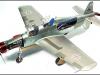 Frank Loch\'s Dornier DO-335a-12