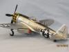 Luca Macchi P-47D bubble top